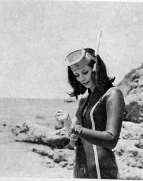 Pin By Neo On Vintage 1 Pinterest Wetsuit Scubas And