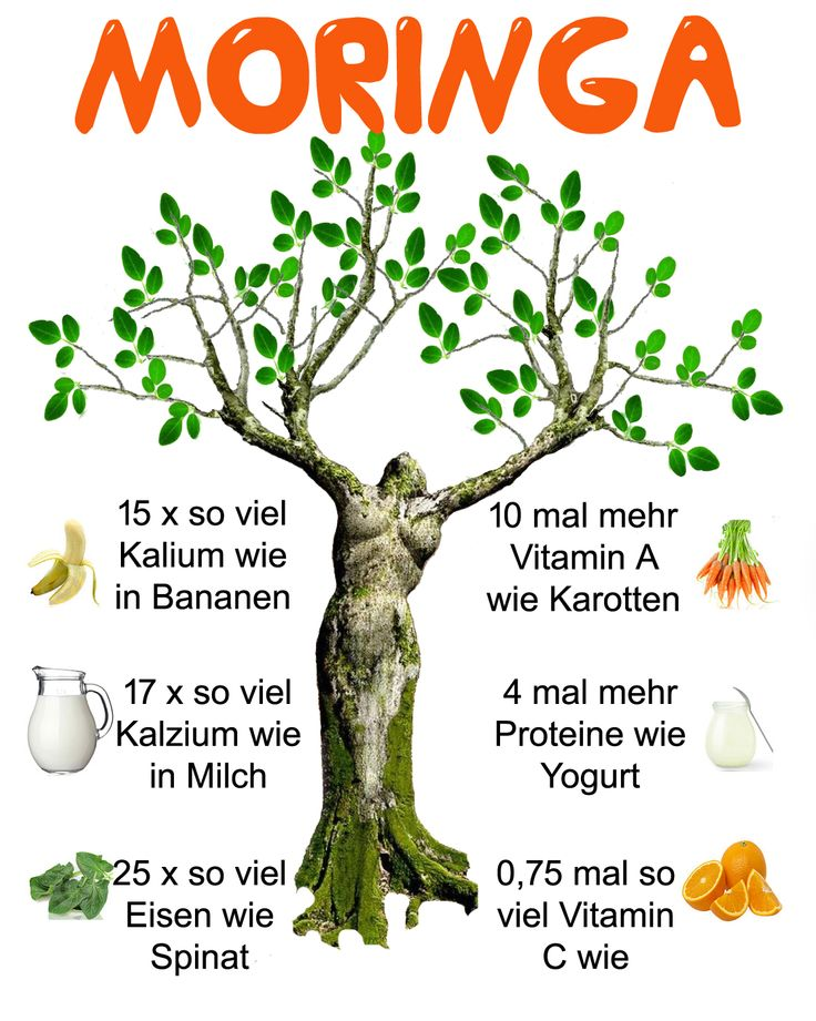 moringa infographic german version...