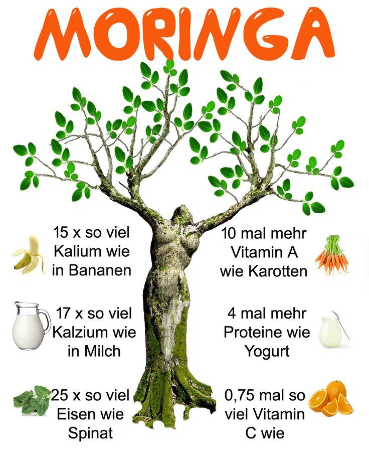 moringa infographic german version...