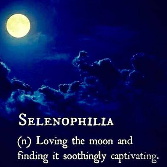 are you a selenophiliac? yes if you love the moon and find it soothingly captivating