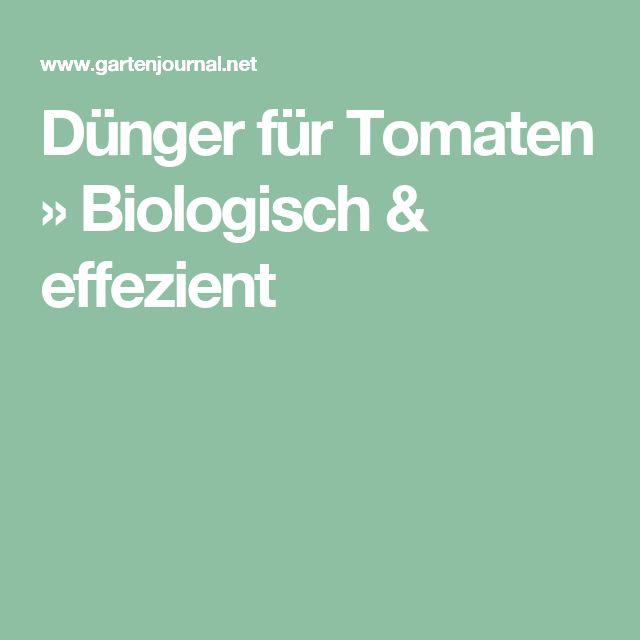 Dünger für Tomaten » Biologisch & effezient