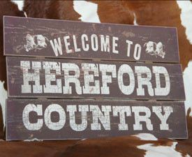 Home Décor | Shop Hereford