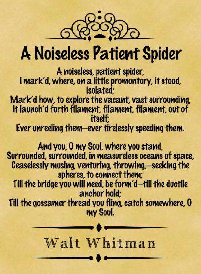 Walt whitman a noiseless patient spider essay
