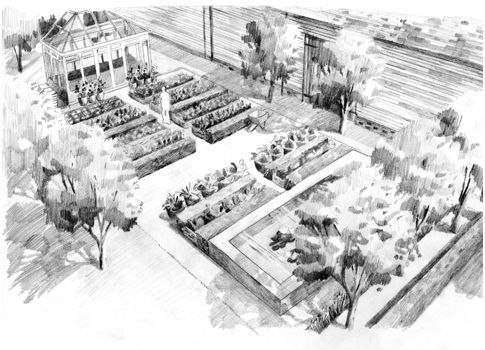 Perspective Landscape Garden Design Drawing Illustration By Max Goodchild Philip Nixon