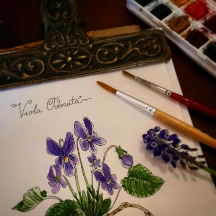 Watercolor Botanical