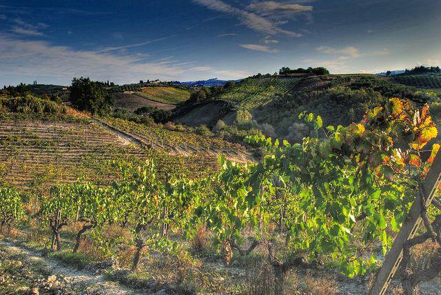 Toscana e il Chianti