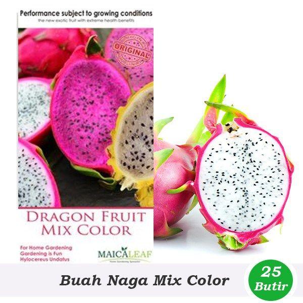Benih Buah Naga Mix Color (Maica Leaf)