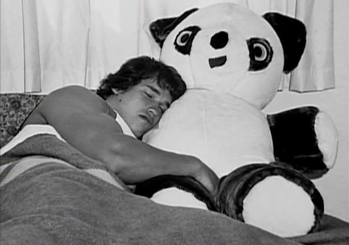 Image result for arnold sleeping