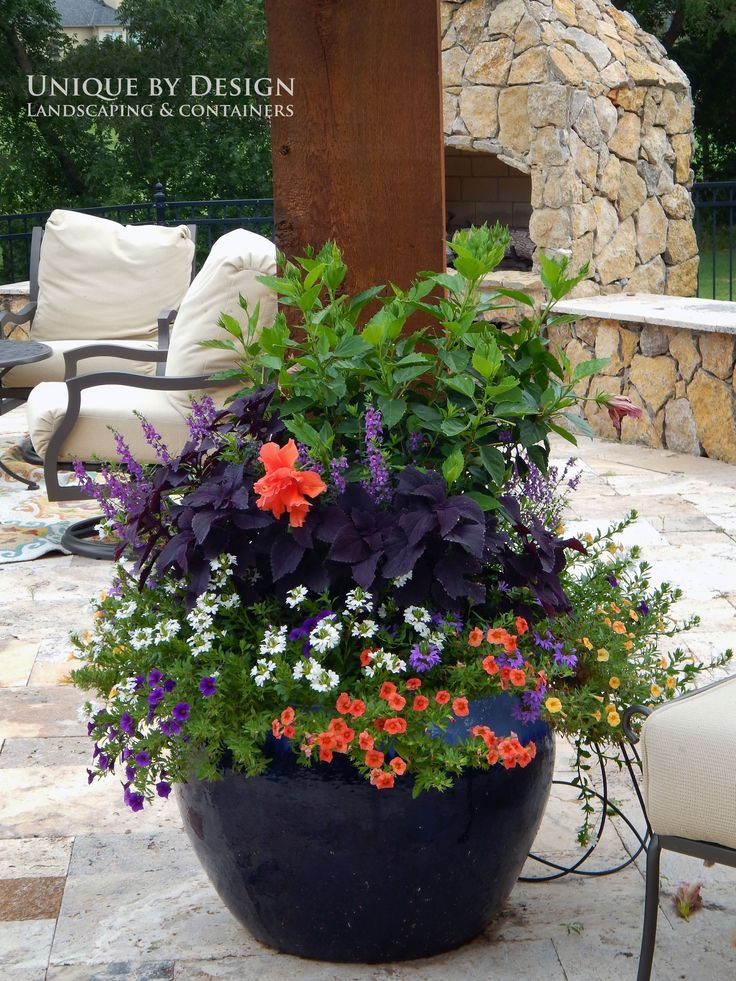 758 best container gardening ideas images on pinterest for Container garden ideas