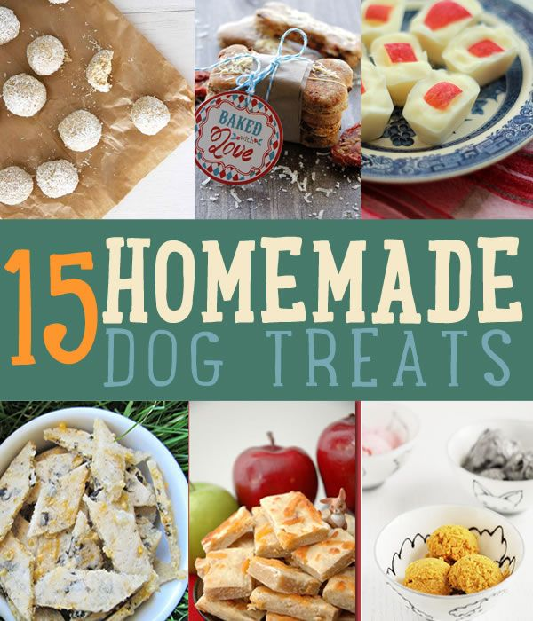 15 DIY Dog Treat Recipes | How to Make Homemade Dog Biscuits and Treats for Dogs http://diyready.com/homemade-dog-treats-recipes-instructions/