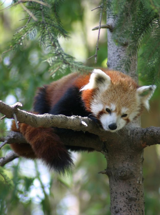 """""""Just hanging out, really."""" 