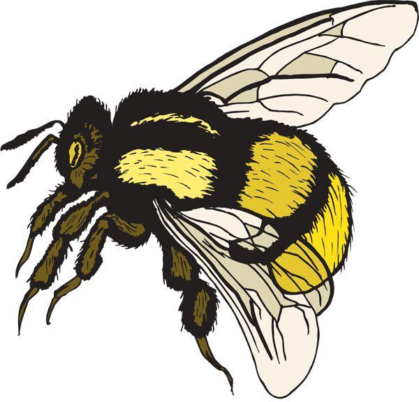 Bumble bee cute bee clip art love bees cartoon clip art more clip ...