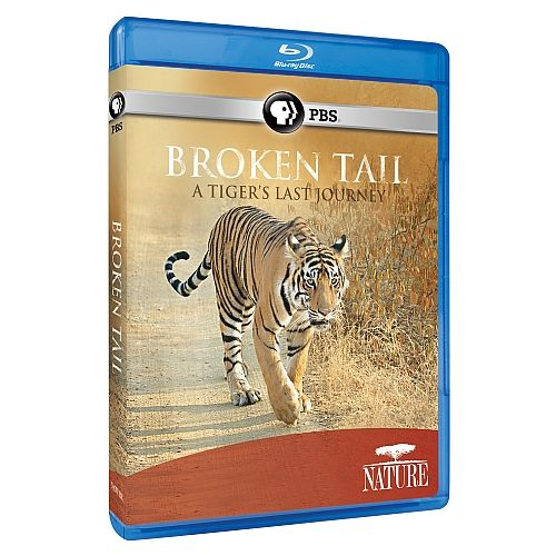 Broken Tail: A Tiger's Last Journey