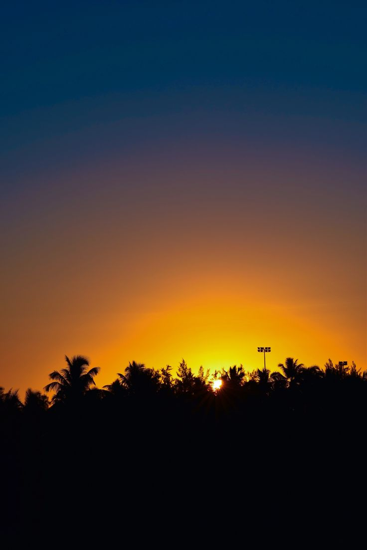 Palm Trees Silhouette @ Sunset by Kevin Renaud on 500px