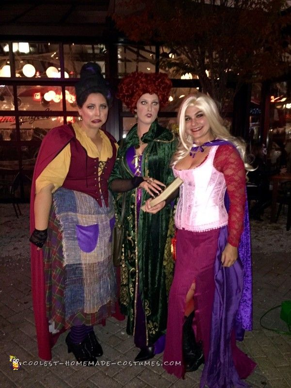 409 best group halloween costume ideas images on pinterest diy the sanderson sisters costumes from hocus pocus solutioingenieria Image collections
