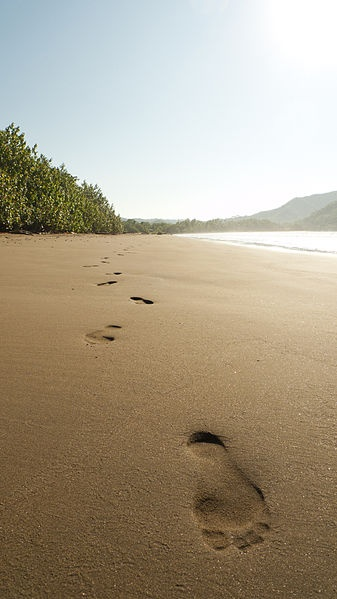 Playa Tambor, Puntarenas, Costa Rica.