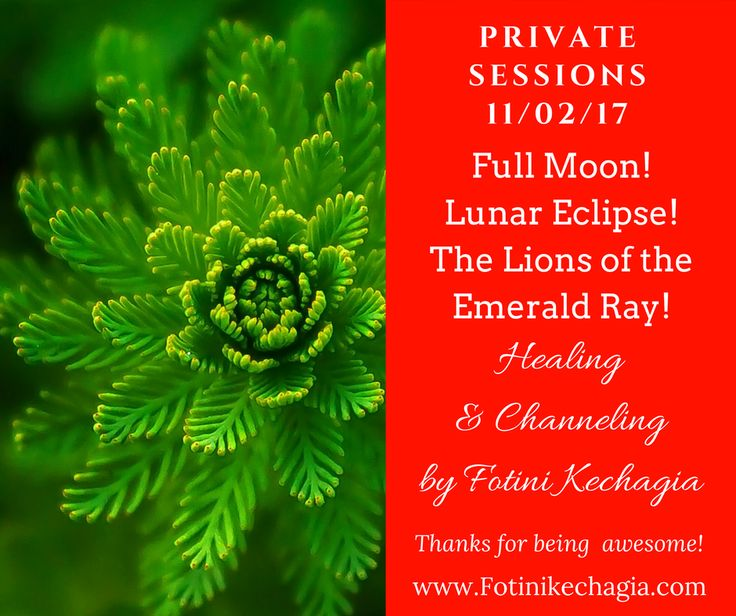 personal-sessions-fotini-kechagia-the-lions-of-the-emerald-ray-of-heaing-11-feb-2017-lunar-eclipse-full-moon
