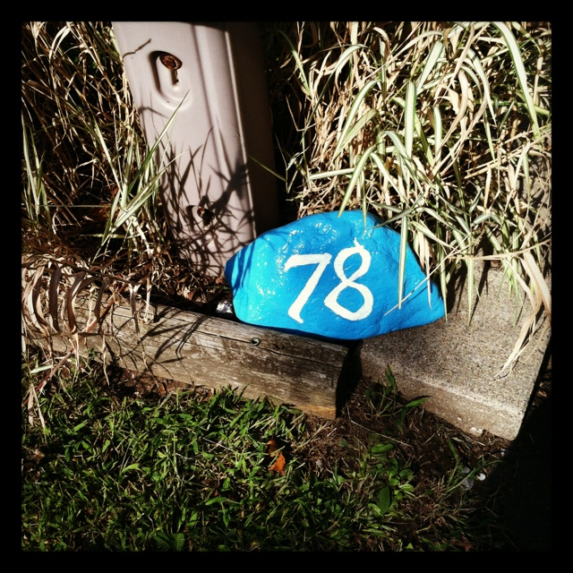 53 best house numbers images on pinterest house numbers for Spray paint rocks for garden