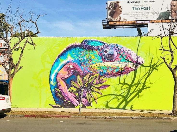 Cool lizard painting I found while walking in Los Angeles #art #arte #green #animal #painting #lizard #chameleon #streetart #urbanart #gallery #sunny #walk #venice #losangeles #local #localart #colorful #creative #snapshot #photography #artphotography #awesome #citylife #street #animalart #bright