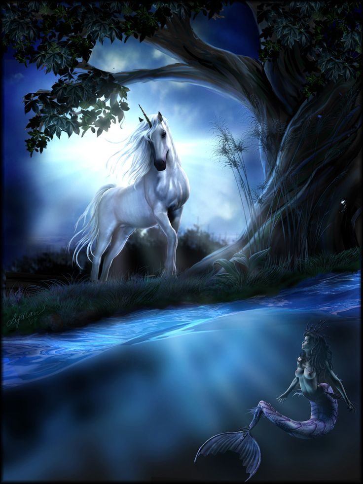 17 Best ideas about Unicorns And Mermaids on Pinterest ...