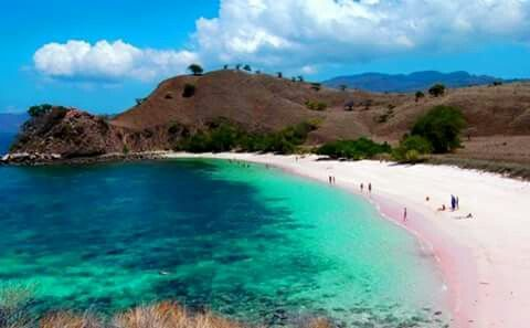 Pink Beach Flores NTT Indonesia