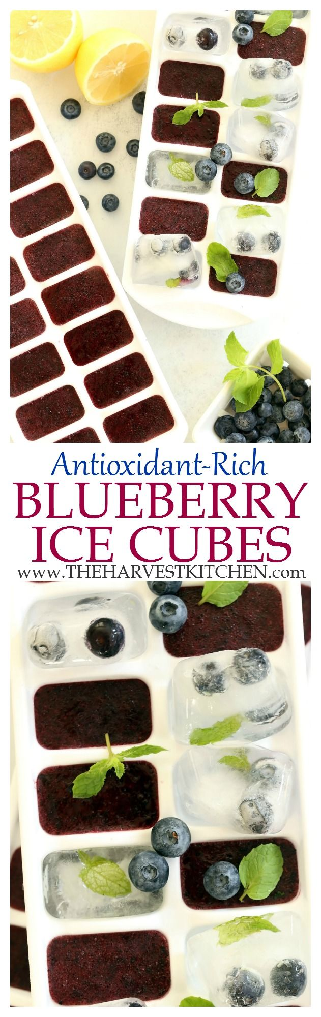 These Immune Boosting Blueberry Ice Cubes add a pop of color,  flavor, and immune boosting benefits to lemonade, iced tea and plain old water. | detox drink recipes | | detox recipes | | fruit flavored ice cubes | | clean eating | | healthy eating |