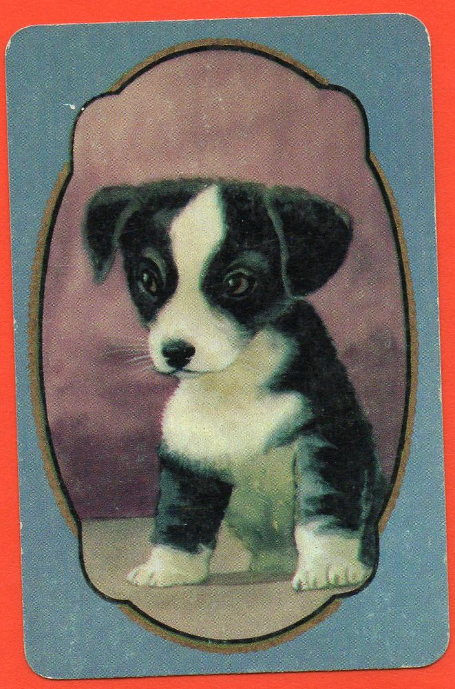 Dog Puppy Exclusive Coles Production Swap Playing Card Un-named Series # 1560 currently $29.50