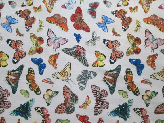 Realistic Butterfly Nature Butterflies Cream Cotton by scizzors