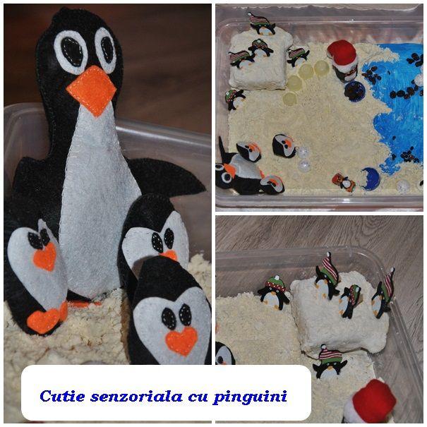 """cutie senzoriala """"Vizita in habitatul pinguinilor"""""""