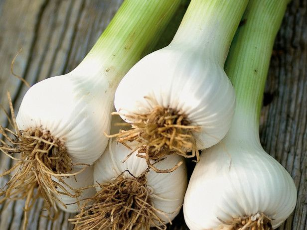 garlic to mosquito You won't stop a skeeter, for example, by eating garlic or taking  some,  especially the aedes aegypti mosquito which can carry zika and.