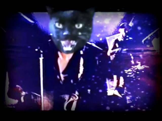 Бесплатная музыка про котов
