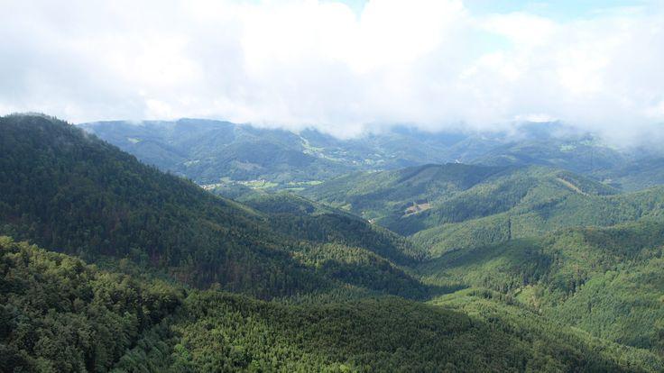 La vallée de Masevaux
