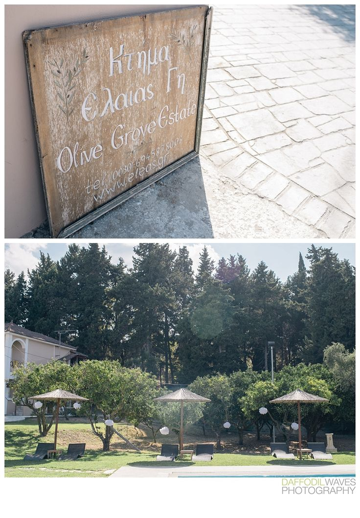 Daffodil Waves Photography - Ben and Grace - Cameo Island Wedding Olive Grove Destination wedding http://www.daffodilwaves.co.uk/blog/cameo-island-wedding-zante-grace-and-ben
