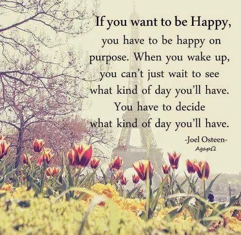 "happy, purpose, wake, up, decide, day, ""Joel Osteen Quote"