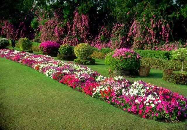 Çiçek Bahçesi ve Peyzaj | Çiçekler - Çiçek Bahçesi | Puzmo.com Puzzle ve Yapboz Oyunları
