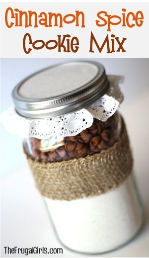 Cinnamon Spice Cookie Mix in a Jar!