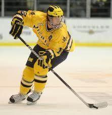 Michigan Wolverines Hockey vs. Michigan State Spartans Ann Arbor, MI #Kids #Events