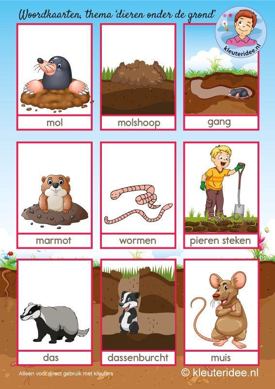 Woordkaarten,dieren onder de grond, kleuteridee.nl, Kindergarten underground animals free printable.