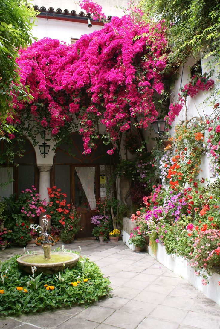 Stunning and colorful courtyard.                                                                                                                                                                                 Mais