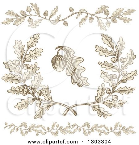 Clipart of Engraved Acorn and Oak Leaf Design Elements - Royalty ...