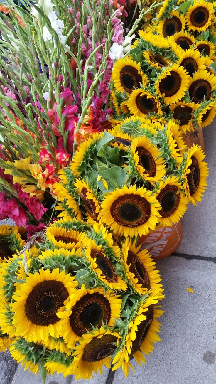 Sunflowers and gladiolas at farmer's market