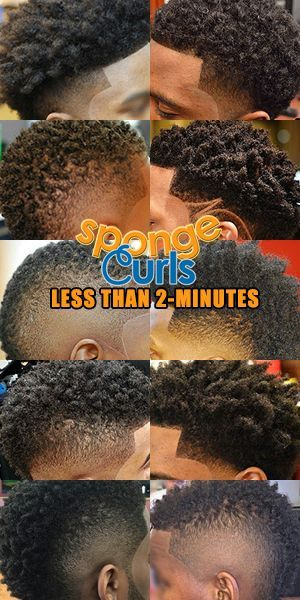 sponge curl pictures