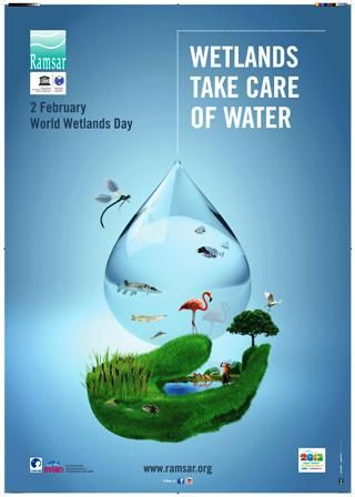 The World Wetlands Day takes place every 2nd February. World Wetlands Day 2013: Wetlands take care of water. #WWD2013