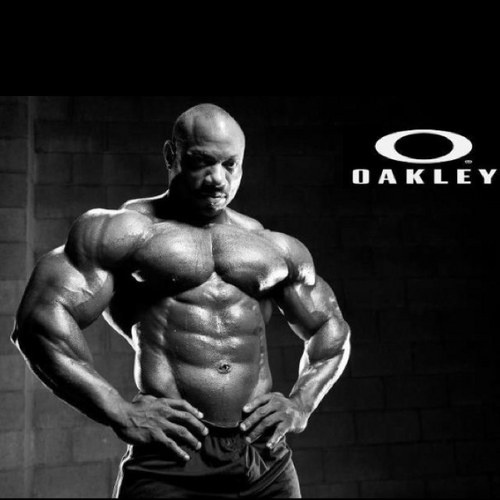 New Gym Muscle Bodybuilding Black Leather Fitness Lifting: 80 Best Dexter Jackson Mr. Olympia 2008 Images On