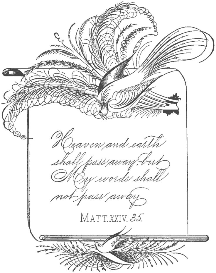 Free vintage clipart spencerian calligraphy birds
