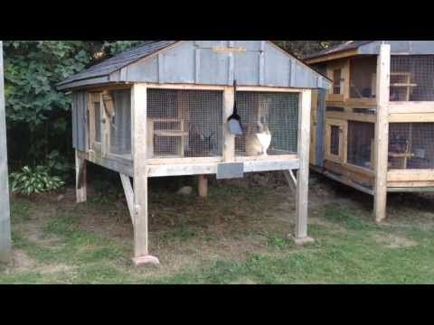 How To Build A Rabbit Hutch Update Youtube Really Like