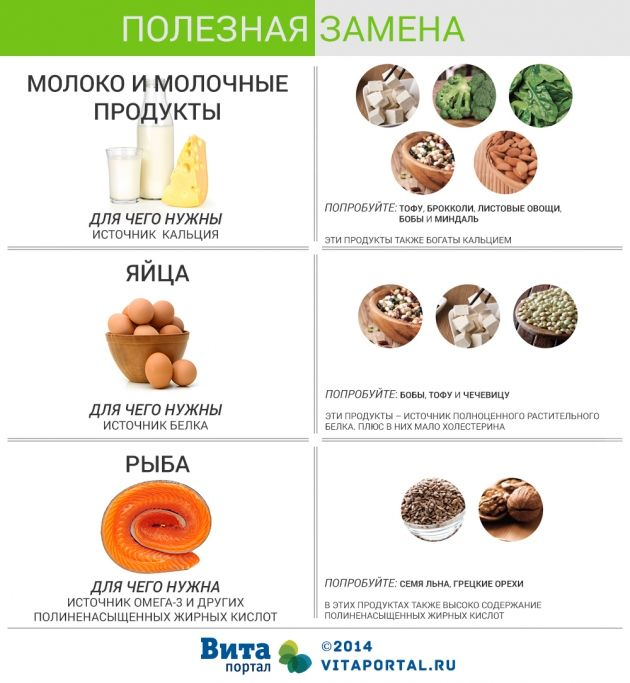 Варианты замены животных продуктов для вегетарианцев. Инфографика | ВитаПортал - Здоровье и Медицина