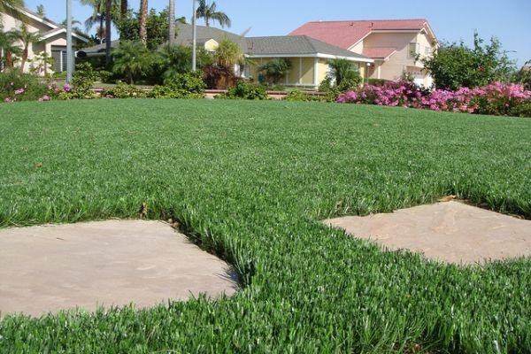 how to build a putting green with real grass