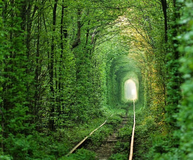 Tunnel of Love, Klevan, Ukraine  http://inhabitat.com/ukraines-tunnel-of-love-is-a-natural-passageway-for-trains-and-lovers/