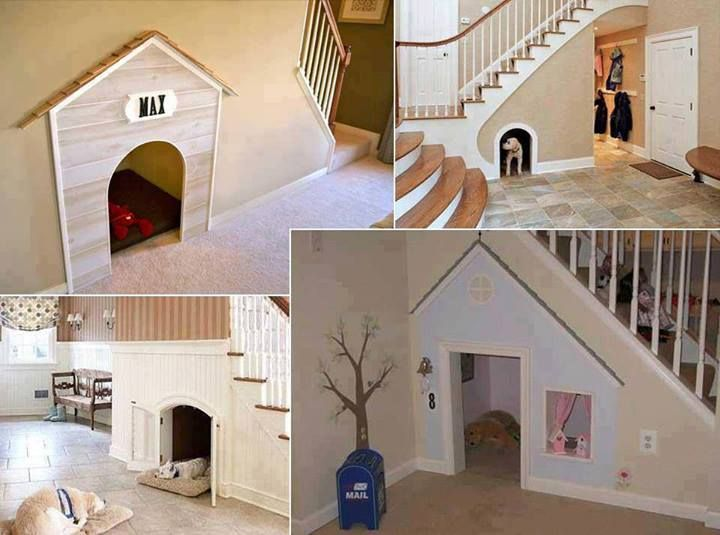 Built-in kennels under stairs!